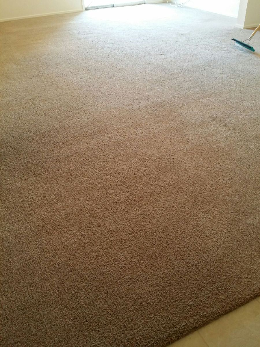 Carpet Cleaning Phoenix Arizona